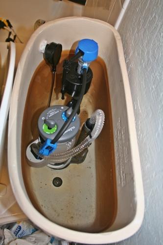 Eco-toilet innards