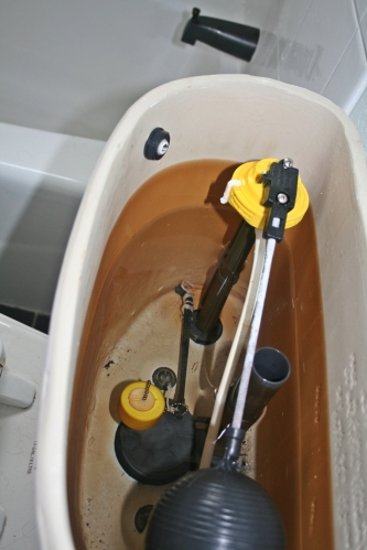 Toilet tank innards