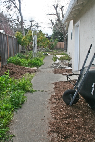 Side yard mulch