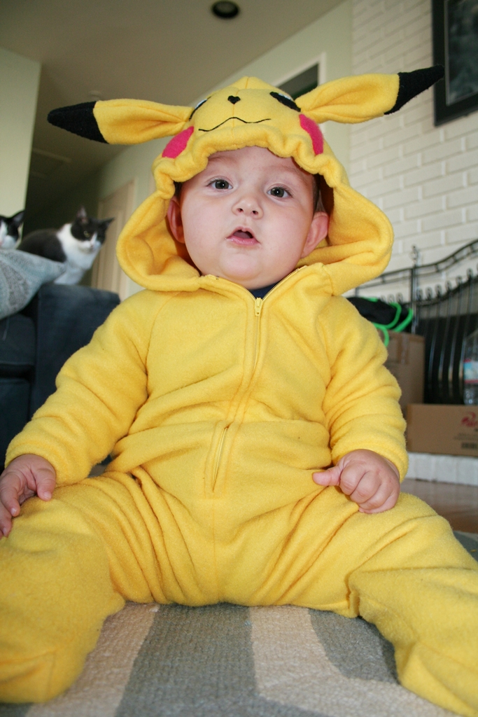 Gallery For gt Baby Pikachu Costume
