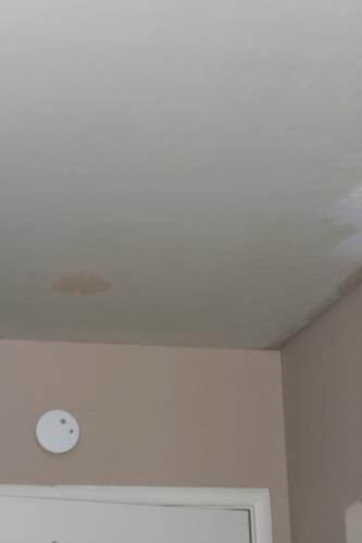 Ceiling 005