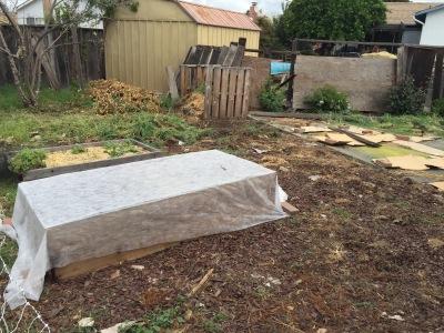 garden sans weeds
